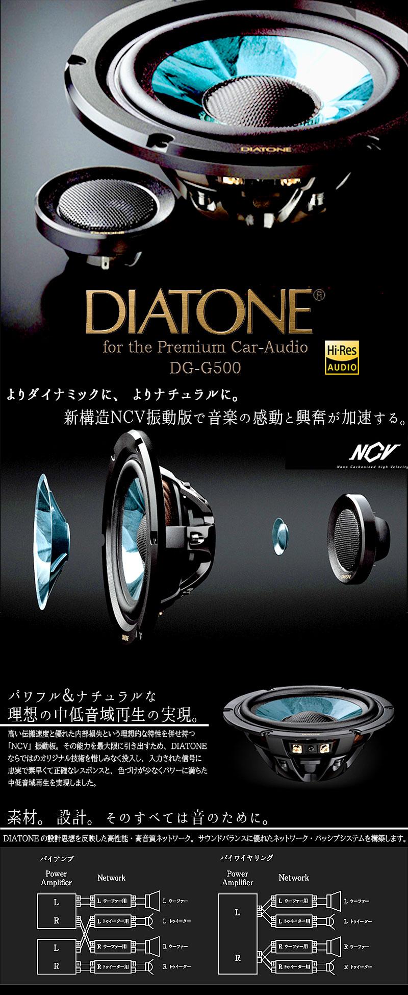 DS-G500