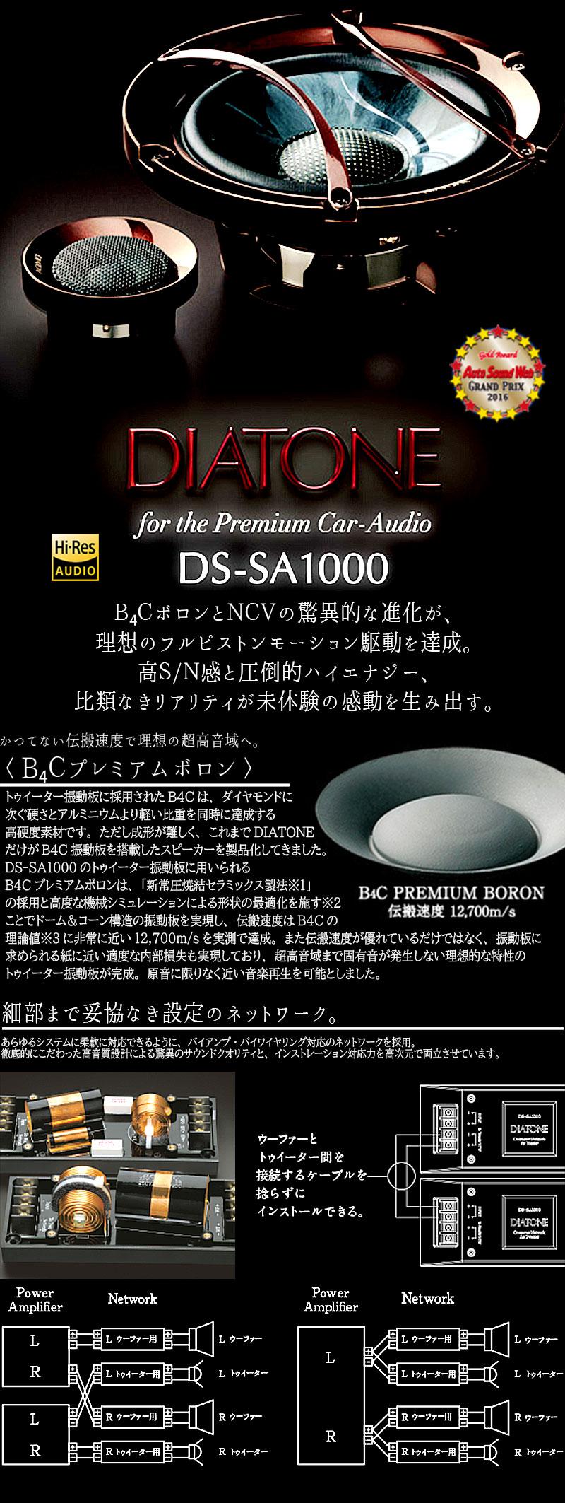 DS-SA1000
